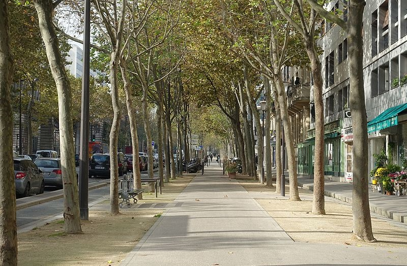 Paris_75013_Boulevard_Auguste_Blanqui_20161026_no_90_sidewalk